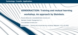 GENDERACTION: Training and mutual learning workshop. An approach by Steinbeis.
