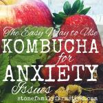 "Assorted fruits and herbs with the title ""Easy Way to Use Kombucha for Anxiety Issues"""