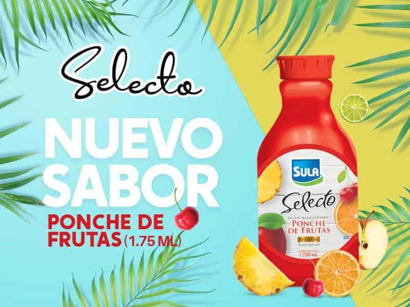 Nuevo Jugo Sula Ponche de Frutas