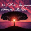 50 Best Handpicked Sunset Quotes That Will Inspire You In 2020