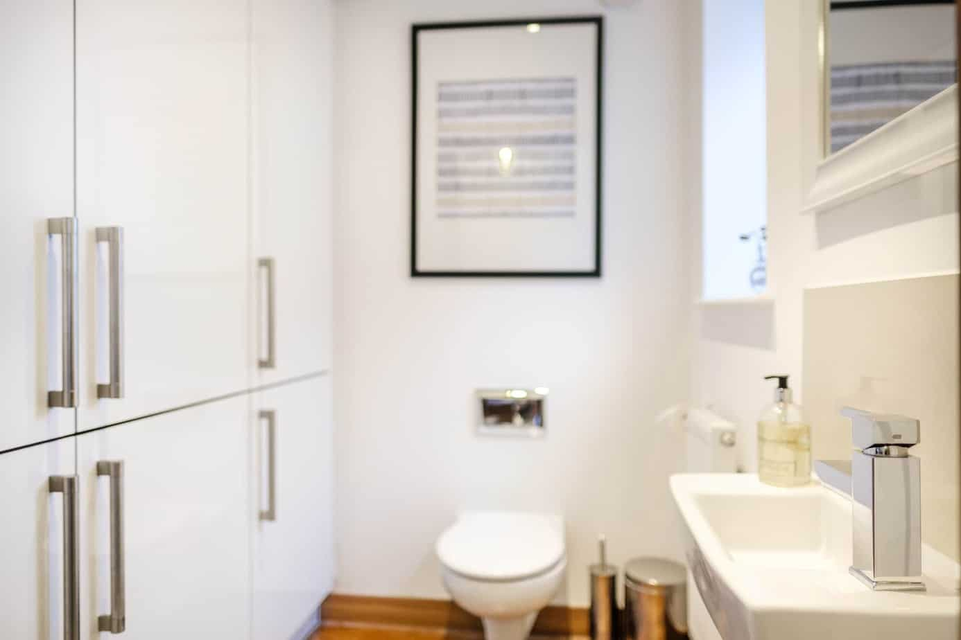 Flamsteed duplex guest bathroom