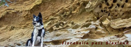 florabella pass