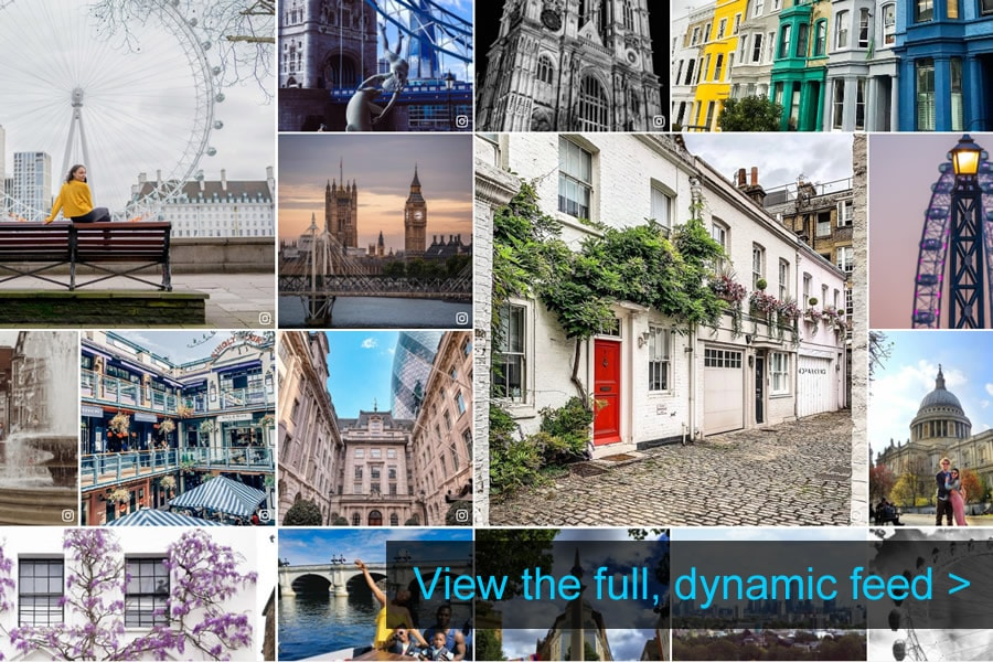 dynamic-attractions-feed