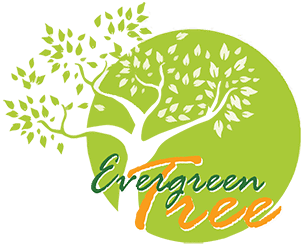 The Evergreen Tree