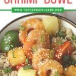 Hawaiian Shrimp Rice bowl long pin