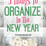 Start the year off on the right note. Here are 5 Things To Organize In The New Year Plus A Free Daily Planner To Keep You Organized.