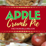 Apple Pie is about as American as you can get. A slice of this Apple Crumb Pie is perfect to enjoy for Thanksgiving dessert or any time of the year. #applepie #applecrumbpie #pie #pierecipe #dessert #baking #Thanksgivingrecipe #thanksgivingdessert #applerecipes #Thanksgiving