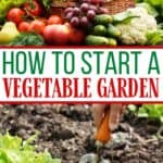 Spring is in the air and it's a perfect time to start thinking about your vegetable garden. Here are helpful tips on How To Start A Vegetable Garden.