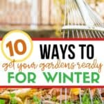 Happy fall y'all. Whether you like it or not, it's time to put our gardens to bed. These 10 Fall Garden Clean-Up Tips will help you prep your gardens for winter. #gardeningtips #gardeningideas