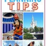 Practical Disney World Planning Tips