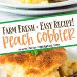 Peach cobbler is by far the best summer dessert recipe. Made with farm-fresh peaches, this is the BEST Peach Cobbler Recipe. Make this delicious peach dessert recipe for family and friends. They will be asking for more.