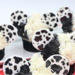 These Disney Cupcakes are inspired by the upcoming Disney movie Cruella. Make a batch of these Cruella de Vil cupcakes and celebrate the wickedness. This easy cupcake recipe is perfect for Disney fans. I love making Disney recipes at home. This Disney cupcake recipe is easy to make and easy to decorate. Celebrate your inner Disney Villain and whip up a batch of these Cruella cupcakes. These cupcakes are perfect for a 101 Dalmatians Party.