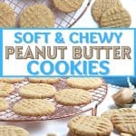 Why buy cookies at the store when you can make fresh ones at home? Follow this Easy Peanut Butter Cookies recipe to make sweet and tasty cookies from scratch.