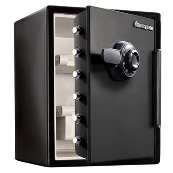 10. SentrySafe Fire and Water Safe