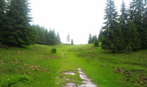 Spre Groapa Ruginoasă, pe ploaie (în recunoaștere pentru a doua zi