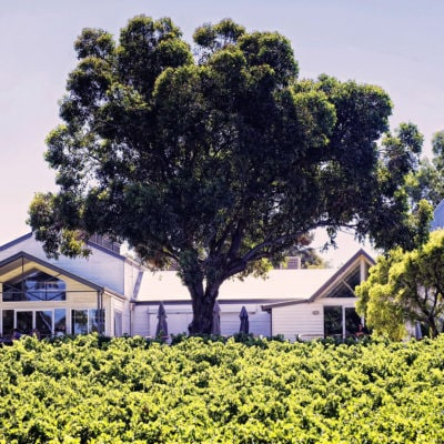 Function Room Outside View With Green Trees