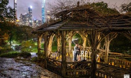 Central Park Gazebo Proposal.