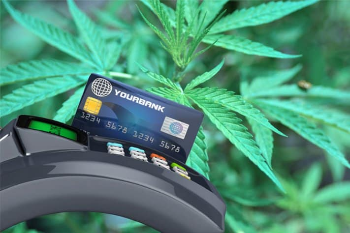Credit card terminal with debit card swiping through cannabis leaves in background