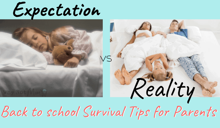 Back to School Survival Tips for the Work at Home Parent