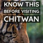 Nepal Know This Before Visiting Chitwan