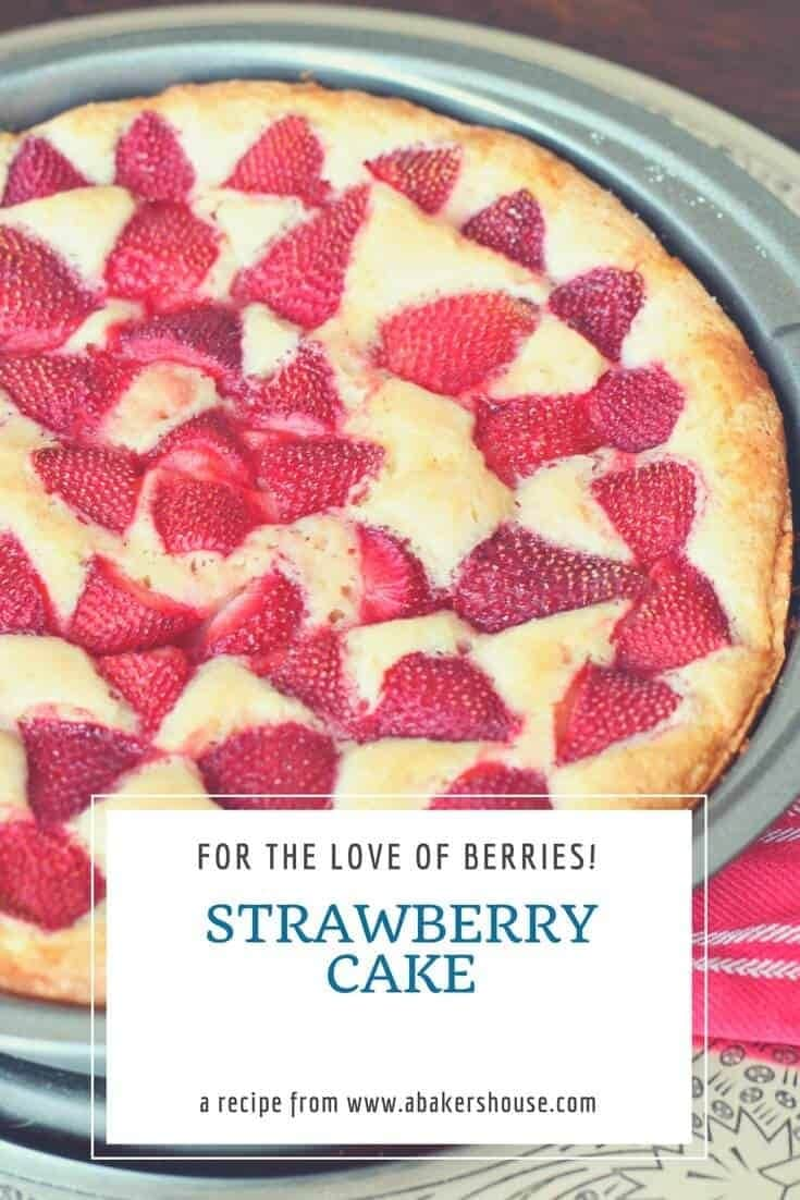 Try this basic strawberry cake, a Martha Stewart recipe, which highlights seasonal berries combined with a traditional plain cake. I stuck with the strawberries in the original recipe but I'll surely expand it this summer to include other fruits like blueberries, raspberries and even peaches and plums. #strawberries #cakerecipe #abakershouse