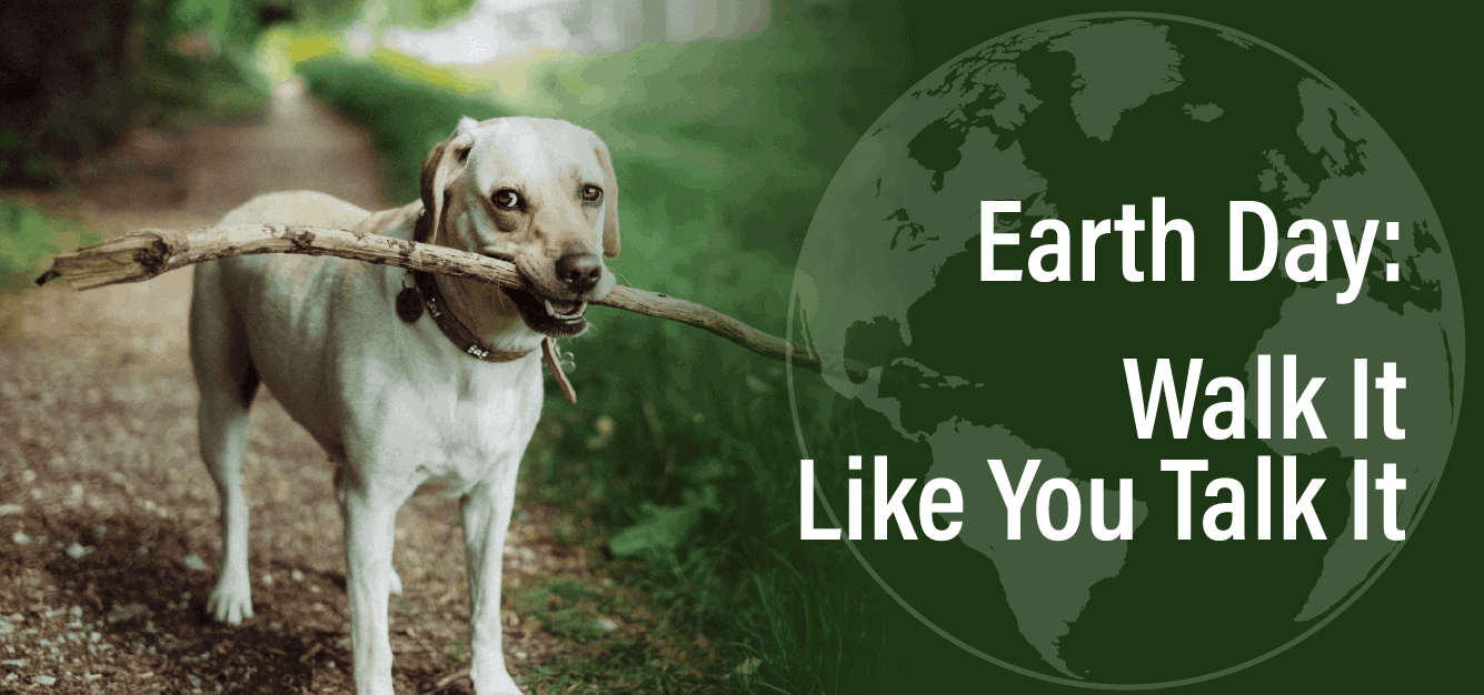 Earth Day: Walk It Like You Talk It