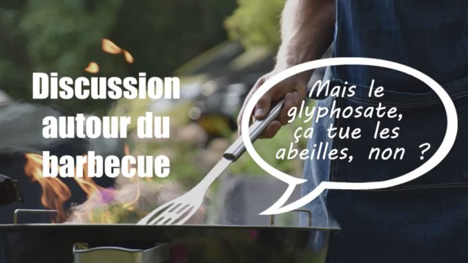 abeilles glyphosate discussion autour du barbecue