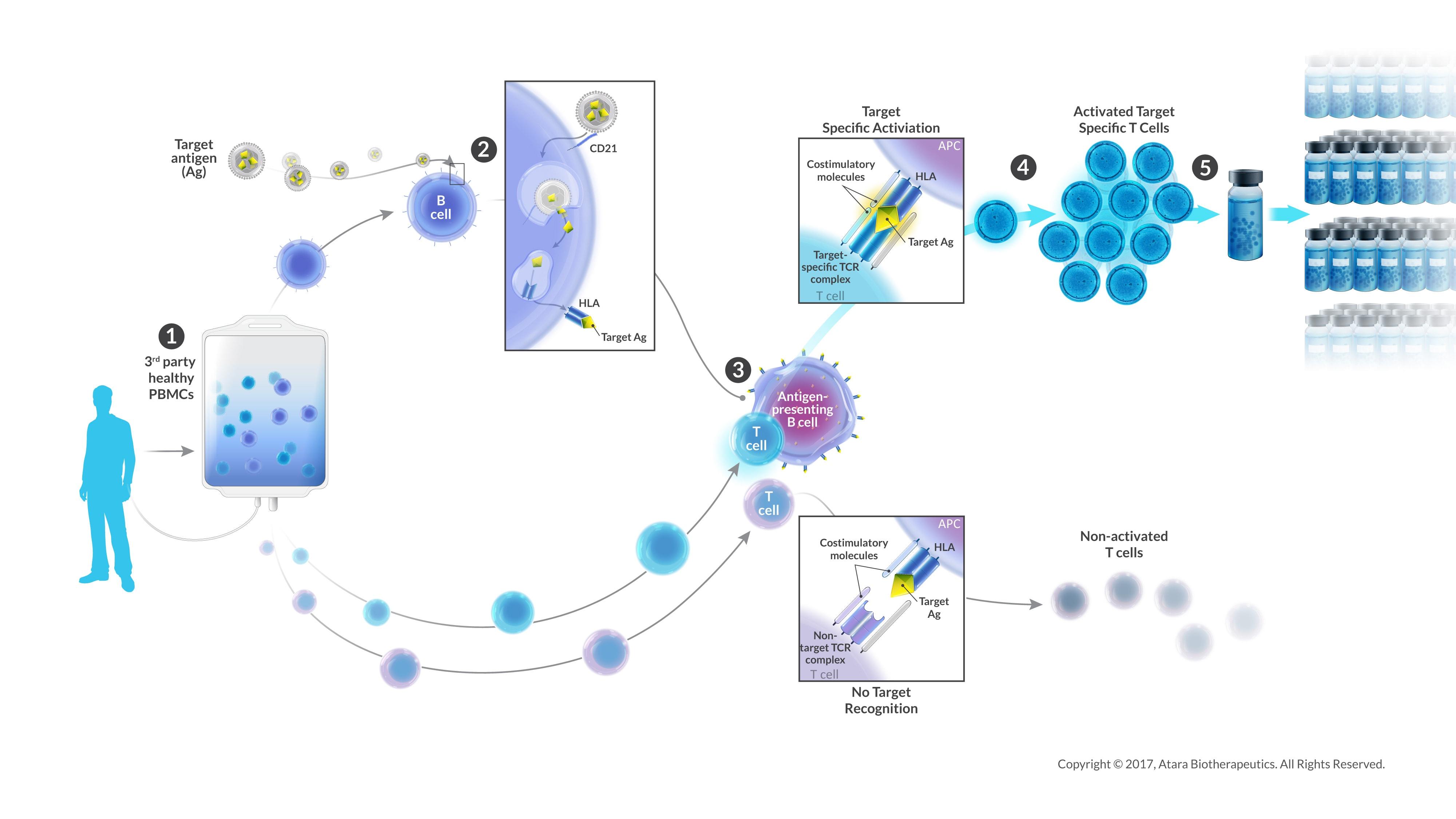 CTL Manufacturing Diagram