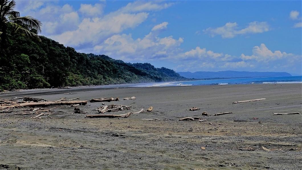 Corcovado National Park - amigos area conservación osa 2