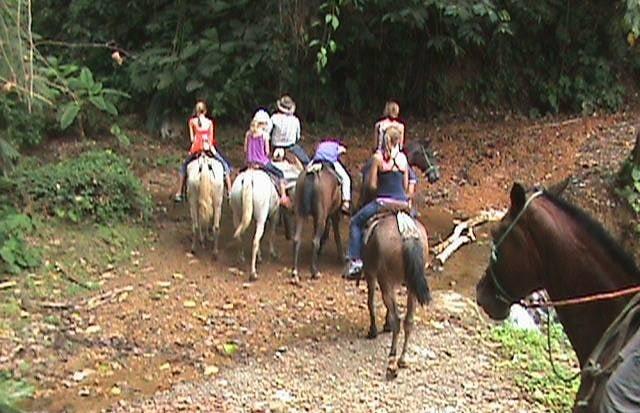 horseback riding, lalo tours ojochal, ballenatales, costaballenalovers, horses,