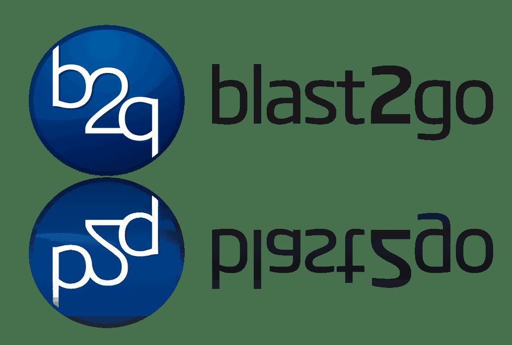 b2g_logo_mirrow