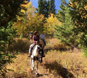 Natural Horsemanship Riding Holiday in BC