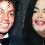 The number of plastic surgeries Michael Jackson had