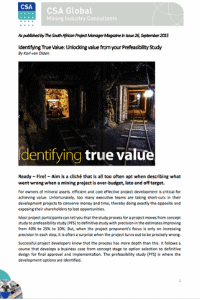 Identifying True Value: Unlocking Value From Your Prefeasibility Study