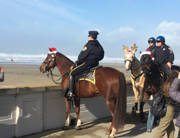 SFPD Horses XMAS