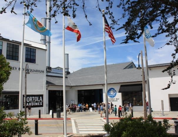 Monterey Aquarium 3170