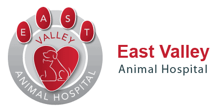 East Valley Animal Hospital