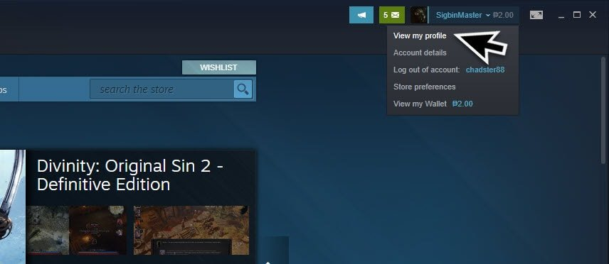 Change Steam Privacy Settings