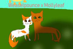WeaselpouncexMollyleaf