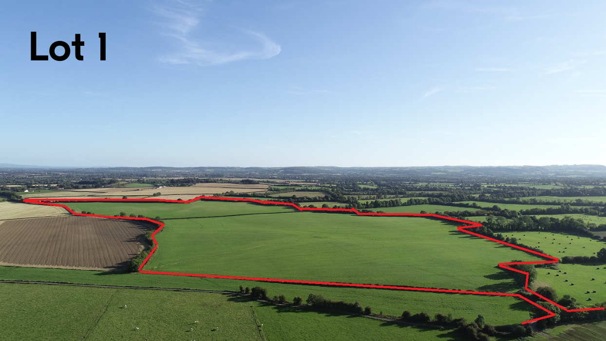 Public Auction by Pat Gannon Auctioneers: Prime 52 Acre Residential Farm