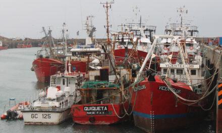 Testeos de vigilancia en trabajadores del Puerto Caleta Paula, ante segunda ola de contagios