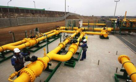 Proyectan exportar unos 60 mil barriles diarios de petróleo por Puerto Rosales