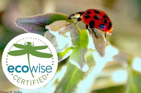 Eco Wise