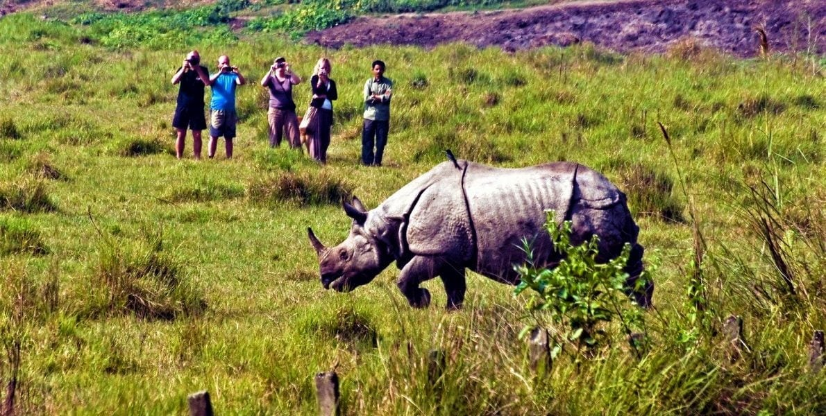 People clicking photo of one horned rhino in Chitwan National Park Tour
