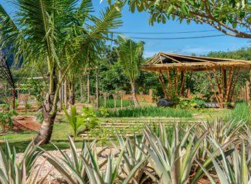 Thailandia, a febbraio apre l'ecoresort The Pavilions Anana Krabi