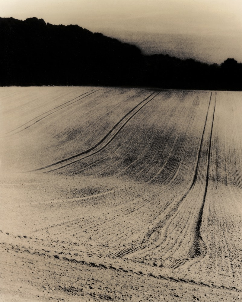 Furrows © Guillaume Zuili