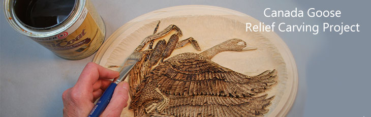 Wood Carving Free Projects, Lora Irish Books
