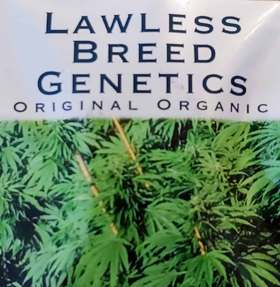 LAWLESS_BREED_GENETICS_LOGO_V1_LUSCIOUS_GENETICS