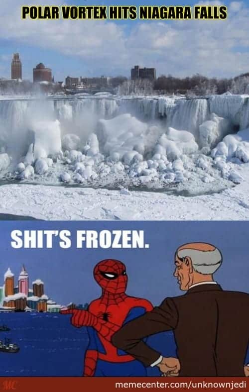 #best #polar #vortex #memes