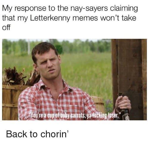 Top 15 letterkenny memes